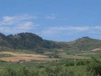 campagna nei pressi di Gibellinai: sulle colline le pale eoliche - 17 giugno 2007  - Gibellina (3314 clic)