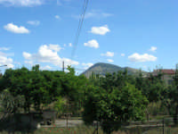 Monte Bonifato al pomeriggio - 22 maggio 2008  - Alcamo (769 clic)
