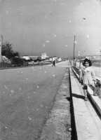 Il viale Europa negli anni cinquanta - 1957 o 1958.   - Alcamo (8406 clic)
