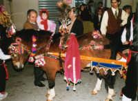 Sfilata di carnevale - 26 febbraio 1995   - Castellammare del golfo (1259 clic)