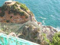 Vista sul mare all'interno dello Zoo Fattoria - 15 luglio 2005  - Terrasini (2926 clic)