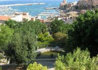 vista sul porto dalla villa - 19 agosto 2007  - Castellammare del golfo (639 clic)
