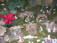 Presepe (particolare) - Istituto Comprensivo G. Pascoli - 23 dicembre 2005   - Castellammare del golfo (1627 clic)