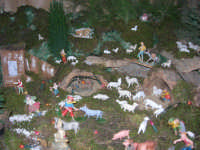 Presepe (particolare) - Istituto Comprensivo G. Pascoli - 23 dicembre 2005   - Castellammare del golfo (1474 clic)