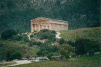il tempio - 3 novembre 2002  - Segesta (1910 clic)