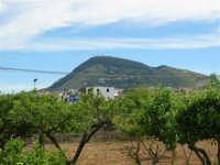 Il Monte Bonifato - 8 maggio 2005  - Alcamo (2480 clic)