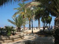 giardino pubblico ai bordi della spiaggia - 30 agosto 2008  - San vito lo capo (493 clic)