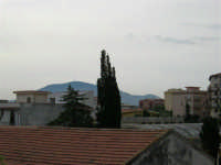 Il Monte Bonifato visto dai tetti di Castellammare  - 12 settembre 2005  - Castellammare del golfo (1202 clic)