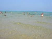 Per fortuna ci sono anche acque balneabili - 29 giugno 2008   - Alcamo marina (741 clic)