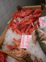 piazza Mercato - Pescheria del sig. Randazzo: gamberoni - 17 luglio 2007  - Alcamo (2477 clic)