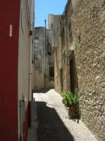 a spasso per il paese - 17 giugno 2007  - Chiusa sclafani (929 clic)
