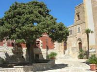 dinanzi il Santuario di Maria SS. di Custonaci - 6 settembre 2007  - Custonaci (852 clic)