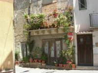 a spasso per il paese: casa addobbata con piante e fiori - 17 giugno 2007  - Chiusa sclafani (1278 clic)