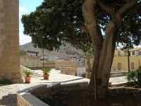 dinanzi il Santuario di Maria SS. di Custonaci - 6 settembre 2007  - Custonaci (1131 clic)