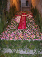 Cene di San Giuseppe - Infiorata della pace - scalinata di Sant'Annedda - via G. Falciglia - 15 marzo 2009   - Salemi (2600 clic)