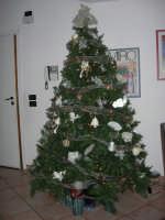 Albero di Natale - 24 dicembre 2005  - Bagheria (3442 clic)