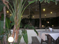 all'interno del Ristorante Pizzeria La Lanterna -  John Pizza - 14 settembre 2007  - Alcamo marina (1158 clic)