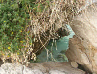 uno scorcio di mare tra le rocce - 19 aprile 2008   - Scopello (1027 clic)