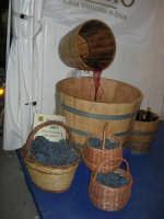 Cous Cous Fest 2007 - Expo Village - itinerario alla scoperta dell'artigianato, del turismo, dell'agroalimentare siciliano e dei Paesi del Mediterraneo - vendemmia - 28 settembre 2007   - San vito lo capo (788 clic)