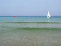il mare, una vela ... - 21 agosto 2007  - Alcamo marina (895 clic)