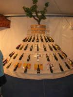 Cous Cous Fest 2007 - Expo Village - itinerario alla scoperta dell'artigianato, del turismo, dell'agroalimentare siciliano e dei Paesi del Mediterraneo - il vino - 28 settembre 2007   - San vito lo capo (781 clic)