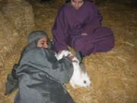 Presepe Vivente - 26 dicembre 2005  - Calatafimi segesta (1332 clic)