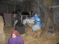 Presepe Vivente - 26 dicembre 2005  - Calatafimi segesta (1555 clic)