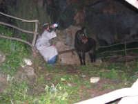 Presepe Vivente - 26 dicembre 2005  - Calatafimi segesta (1150 clic)