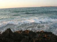 Golfo del Cofano (10) - 2 settembre 2007   - San vito lo capo (765 clic)