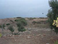 panorama - 16 settembre 2007  - Riserva dello zingaro (718 clic)