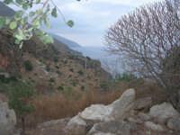 panorama - 16 settembre 2007  - Riserva dello zingaro (918 clic)