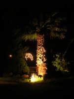 Presepe Vivente presso l'Istituto Comprensivo A. Manzoni - la palma e la stella cometa - 20 dicembre 2007  - Buseto palizzolo (1032 clic)