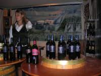Cous Cous Fest 2007 - Expo Village - itinerario alla scoperta dell'artigianato, del turismo, dell'agroalimentare siciliano e dei Paesi del Mediterraneo - Strada del Vino Erice DOC - 28 settembre 2007   - San vito lo capo (1039 clic)