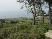 panorama dal monte Erice - 1 maggio 2008      - Erice (848 clic)