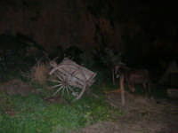 Il Presepe Vivente di Custonaci nella grotta preistorica di Scurati (grotta Mangiapane) (103) - 26 dicembre 2007   - Custonaci (900 clic)