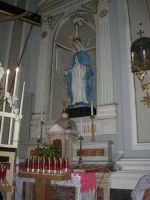 interno della Chiesa Maria SS. delle Grazie: l'Immacolata - 3 settembre 2008   - Torretta (2515 clic)
