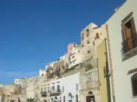 case sul porto - 13 marzo 2009  - Castellammare del golfo (1853 clic)