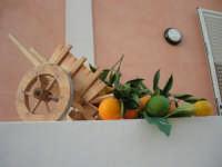 1ª Rassegna del Folklore Siciliano - Il Gruppo Folkloristico Torre Sibiliana organizza: SAPERI E SAPORI DI . . . MATAROCCO, una grande festa dedicata al folklore e alle tradizioni popolari - 30 novembre 2008   - Marsala (783 clic)