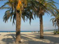 la spiaggia - 12 ottobre 2008  - San vito lo capo (952 clic)