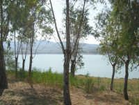 LAGO POMA - lago artificiale nei pressi di Partinico - 5 ottobre 2007   - Partinico (944 clic)