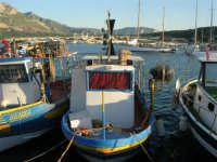 il porto - 20 maggio 2007  - San vito lo capo (643 clic)