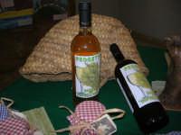 Progetto Didattico Bacco . . . non solo vino - I.C. G. Pascoli - 12 dicembre 2008   - Castellammare del golfo (417 clic)