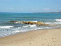 spiaggia di levante - con gabbiani - e golfo di Castellammare - 5 ottobre 2008   - Balestrate (1137 clic)