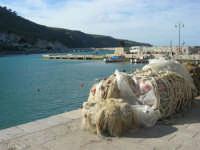al porto - 13 marzo 2009  - Castellammare del golfo (1032 clic)
