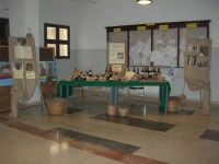Progetto Didattico Bacco . . . non solo vino - I.C. G. Pascoli - 12 dicembre 2008   - Castellammare del golfo (508 clic)