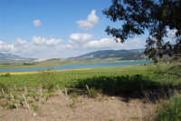 Lago Arancio - 25 aprile 2008   - Sambuca di sicilia (1195 clic)