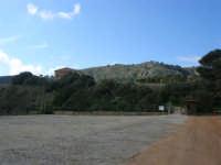 area archeologica: il tempio seminascosto dalla vegetazione - 18 gennaio 2009  - Segesta (4754 clic)