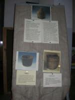Progetto Didattico Bacco . . . non solo vino - I.C. G. Pascoli - 12 dicembre 2008   - Castellammare del golfo (416 clic)