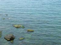 cala Petrolo: mare e scogli - 7 maggio 2006  - Castellammare del golfo (1129 clic)