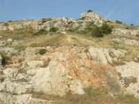 monte Erice - particolare - 1 maggio 2008   - Erice (813 clic)